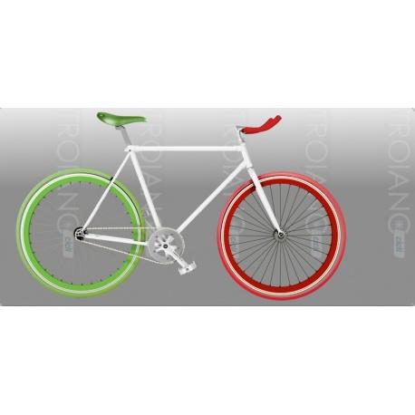 Bici Fixed FT Italia
