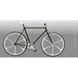 Bici Fixed FT Green Alloy